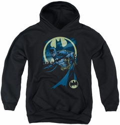Batman youth teen hoodie Heed The Call black