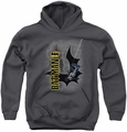 Batman youth teen hoodie Swing Into Action charcoal
