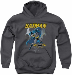 Batman youth teen hoodie Urban Gothic charcoal