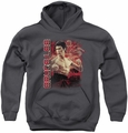 Bruce Lee youth teen hoodie Fury charcoal