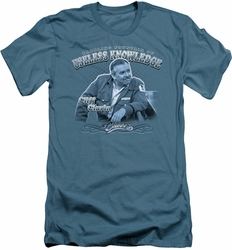 Cheers slim-fit t-shirt Fountain Of Knowledge mens slate