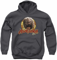 Dark Crystal youth teen hoodie Aughra Circle charcoal