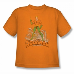 DC Comics youth teen t-shirt Aquaman Distressed orange