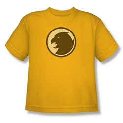 DC Comics youth teen t-shirt Hawkman Symbol gold