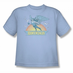DC Comics youth teen t-shirt Hawkwoman light blue
