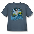 DC Comics youth teen t-shirt Nightwing slate