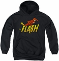 DC Comics youth teen hoodie 8 Bit Flash black