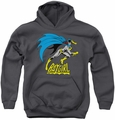 Batgirl youth teen hoodie Is Hot charcoal