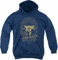 DC Comics youth teen hoodie Batman Gotham Crusader navy