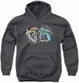 DC Comics youth teen hoodie Batman & Robin Action Duo charcoal