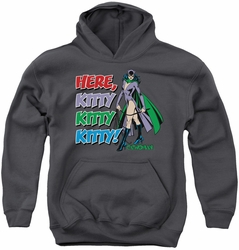DC Comics youth teen hoodie Catwoman Here Kitty charcoal