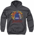 DC Comics youth teen hoodie Darkseid Stars charcoal