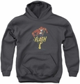 DC Comics youth teen hoodie Desaturated Flash charcoal