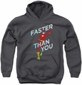 DC Comics youth teen hoodie Flash Faster Than You charcoal