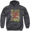 DC Comics youth teen hoodie Flash Just Passing Through charcoal