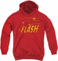 DC Comics youth teen hoodie Flash Speed Distressed red