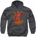DC Comics youth teen hoodie Flash Whirlwind charcoal