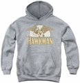 DC Comics youth teen hoodie Hawkman Fly By athletic heather