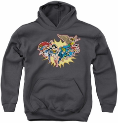 DC Comics youth teen hoodie Justice League Please Get Me charcoal