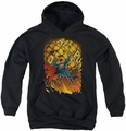 DC Comics youth teen hoodie Superman #1 black