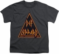 Def Leppard youth teen t-shirt Distressed Logo charcoal