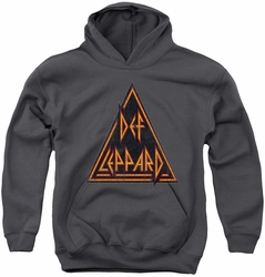 Def Leppard youth teen hoodie Distressed Logo charcoal