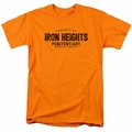 Flash t-shirt Iron Heights mens orange