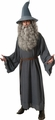 Gandalf adult costume The Hobbit
