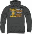 Garfield pull-over hoodie Smiling adult charcoal
