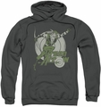 Green Arrow pull-over hoodie Right On Target adult charcoal
