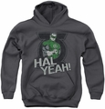 Green Lantern youth teen hoodie Hal Yeah charcoal