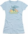 Hawkwoman t-shirt DC Comics juniors