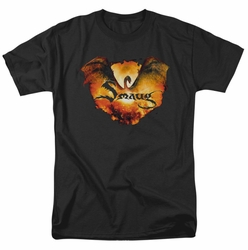 Hobbit t-shirt Reign In Flame mens black