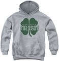 Irish Pride youth teen hoodie Lucky to be Irish athletic heather