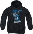Justice League of America youth teen hoodie Batman Blue & Gray black