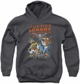 Justice League of America youth teen hoodie Big Group charcoal