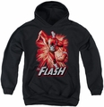 Justice League of America youth teen hoodie Flash Red & Gray black