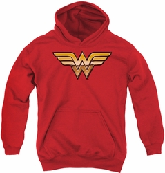 Justice League of America youth teen hoodie Golden red