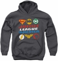 Justice League of America youth teen hoodie Pixel Logos charcoal