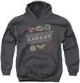 Justice League of America youth teen hoodie Symbols charcoal