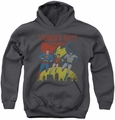 Justice League of America youth teen hoodie World's Best charcoal
