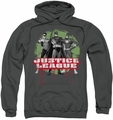 Justice League pull-over hoodie JLA Trio adult charcoal