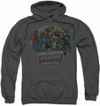 Justice League pull-over hoodie Join The JLA adult charcoal