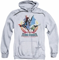 Justice League pull-over hoodie Team Power adult athletic heather