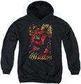 Justice League youth teen hoodie Nightwing #1 black