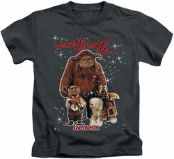 Labyrinth kids t-shirt Should You Need Us charcoal