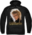Labyrinth pull-over hoodie Jareth adult black