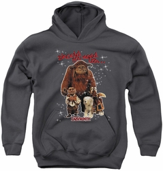 Labyrinth youth teen hoodie Should You Need Us charcoal