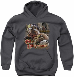 Labyrinth youth teen hoodie Sir Didymus charcoal