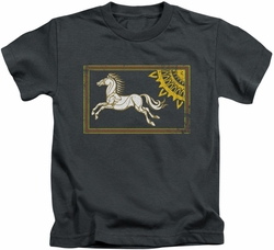 Lord of the Rings kids t-shirt Rohan Banner charcoal